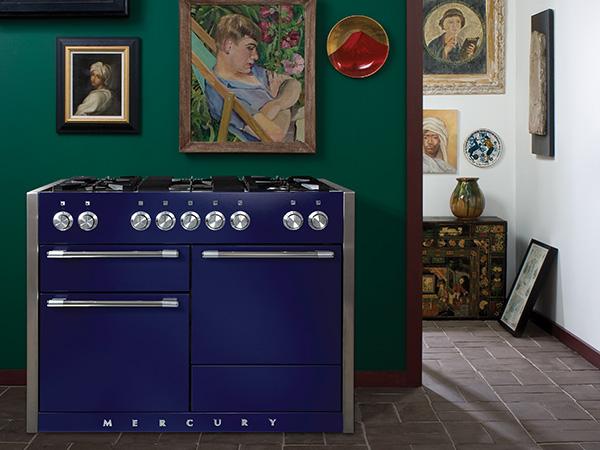 Mercury cooker 3