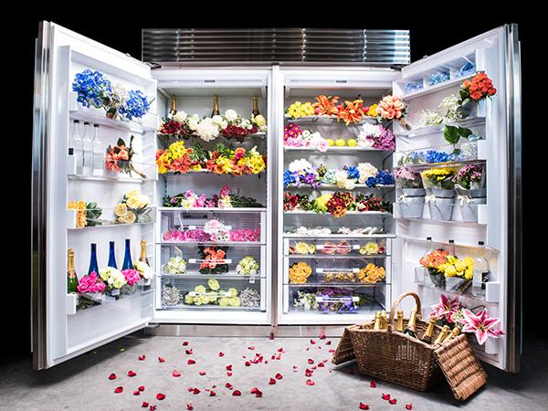 Subzero fridge 4