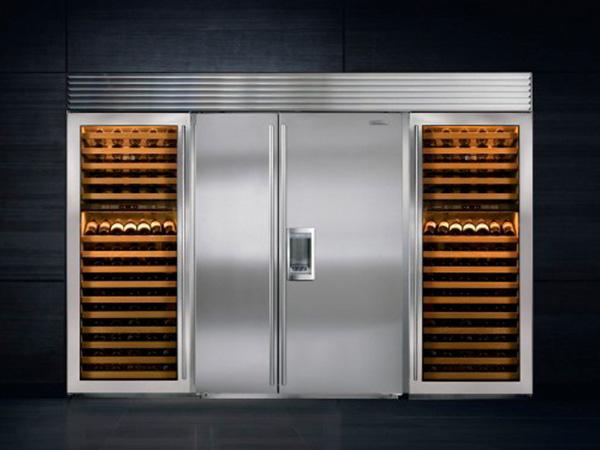 Subzero fridge 5